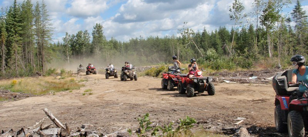Take your friends and family out on an ATV group ride.